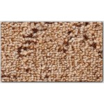 Ковролин AW, коллекция  Jarek (Джерек), наименование ковролина AW Jarek (Джерек) 80, 5м